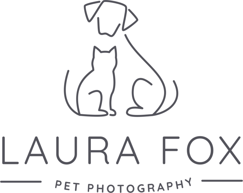 Laura Fox Photography